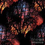 Sunrise - Dawn's Early Light Art Print