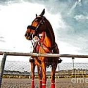 Day At The Track Art Print