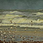 Day For The Birds Art Print