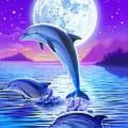 Day Of The Dolphin Art Print