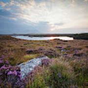 Daybreak Over Connemara Bog Art Print