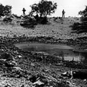 Dead Cattle Contaminated Water Hole Once In 100 Year's Drought Near Sells Arizona Tohono O'odham  Art Print