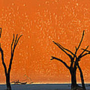 Dead Trees By Red Sand Dunes, Dead Art Print