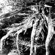 Deadtree Art Print