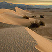 Death Valley Mesquite Flat Sand Dunes Img 0177 Art Print