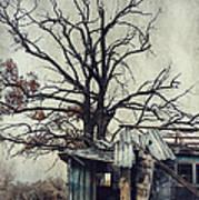Decay Barn Art Print