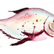 Decorative Fish Art Print