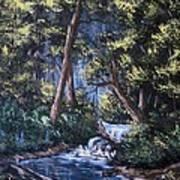 Deep Woods Art Print