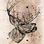 Deer 4 Art Print