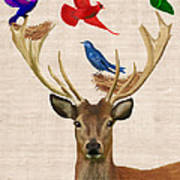 Deer And Birds Nests Print by Kelly McLaughlan