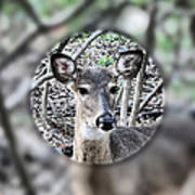 Deer Hunter's View Art Print