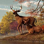Deer On An Autumn Lakeshore  Art Print