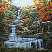 Deer Painting - Tranquil Deer Cove Art Print by Crista Forest