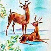Deers Break Art Print
