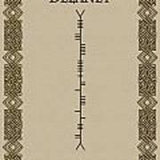 Delaney Written In Ogham Art Print