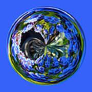 Delicate Orb Art Print