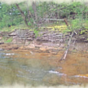 Dells Creekside Art Print