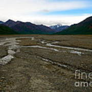 Denali National Park 3 Art Print