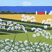 Denmark 4 Art Print