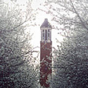Denny Chimes Foggy Blossoms Art Print by Ben Shields