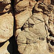 Desert Face 2 Art Print
