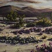 Desert In Bloom At Dusk Art Print