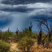 Desert Rains  Art Print