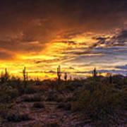 Desert Skies  Art Print