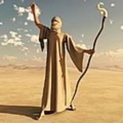 Desert Sorcerer Art Print