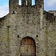 Desmond Castle Doors Art Print