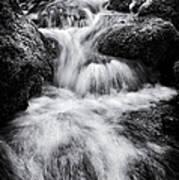 Devon River Monochrome Art Print