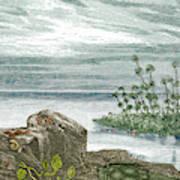 Devonian Period Art Print