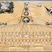 Diagram: American Union Art Print