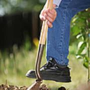 Digging Soil Art Print