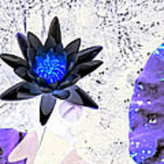 Digitally Altered Water Lily Art Print