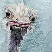 Dimples - An Ostrich Art Print