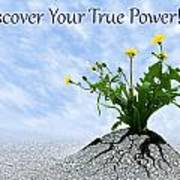 Discover Your True Power Art Print