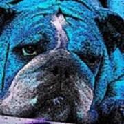 Do I Look Like I Am A Happy Dog Art Print