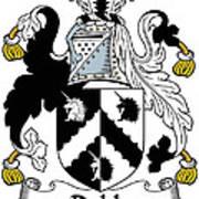 Dobb Coat Of Arms Irish Art Print