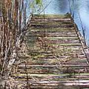 Dock In The Glades Art Print