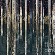 Dock Pilings Art Print