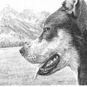 Dog And Mountains Pencil Portrait Art Print