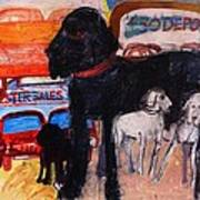 Dog At The Used Car Lot, Rex Gouache On Paper Art Print