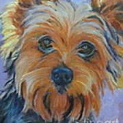 Dog Days of Summer 2 Art Print