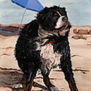 Dog Days Of Summer V2 Art Print