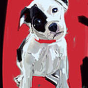 Dog Doggie Red Art Print