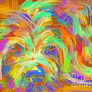 Dog Matze Art Print