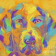 Dog Noor Art Print
