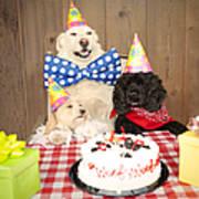 Doggy Birthday Party Art Print by Jan Tyler