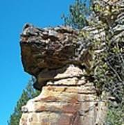 Dog's Head Rock Formation Art Print